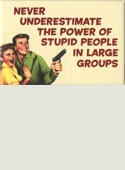 Stupid People Magnet